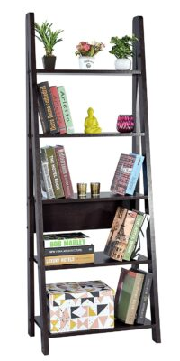 DeckUp Ladder Bookshelf